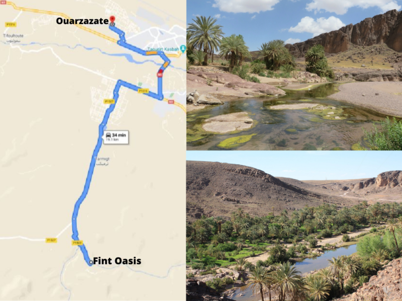 best things to do in ouarzazate;morocco;fint oasis